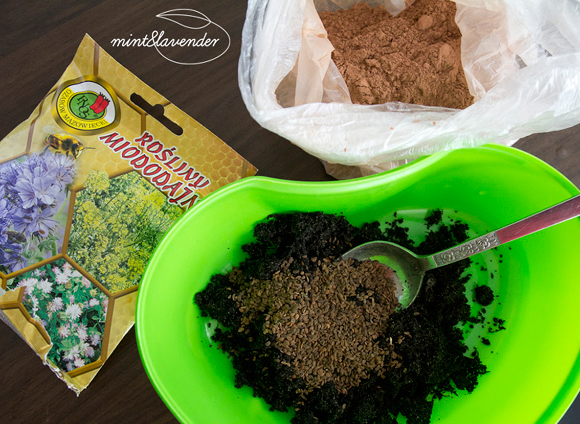 Seed Bombs • Active and Eco - sport | outdoor | healthy